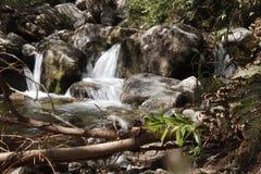 Nature& x27;s miracle. Miracle treasuretrove activenature waterfall natures royalty free stock photography