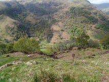Mirada abajo al valle abajo Foto de archivo libre de regalías