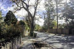 Mirada abajo de la calle con las cercas en cada lado Foto de archivo libre de regalías