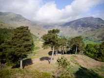 Mirada abajo de la colina a través de árboles al valle Fotos de archivo