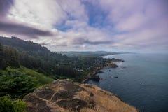 Mirada abajo de la costa de Oregon Fotografía de archivo