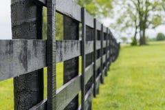 Mirada abajo de la línea de cerca negra del caballo Imagenes de archivo