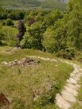 Mirada abajo de la trayectoria de la colina Imagenes de archivo