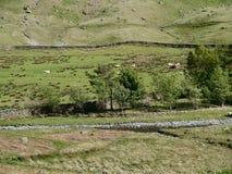 Mirada abajo de lado del valle Imagen de archivo libre de regalías