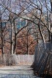 Mirada abajo de un camino en un parque Foto de archivo