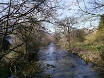Mirada abajo del río en primavera Fotos de archivo libres de regalías