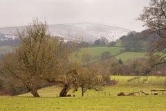 Mirada abajo del valle Imagen de archivo libre de regalías