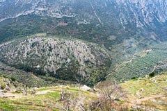 Mirada abajo en el valle de olivares de Delphi Greece con los mountians en el fondo Imágenes de archivo libres de regalías