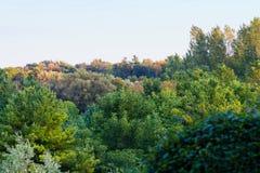 Mirada abajo en los tops de árboles que exhiben colores del verano tardío y de la caída Fotografía de archivo