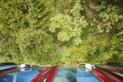 Mirada abajo en un bosque del teleférico Imágenes de archivo libres de regalías