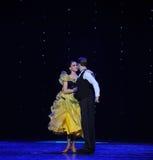 Mirada cariñosa en- danza del mundo de Austria francesa del cancán- fotografía de archivo