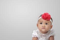 Mirada del bebé en el copyspace en gris Foto de archivo