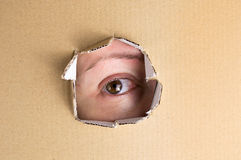 Mirada del ojo Fotografía de archivo libre de regalías
