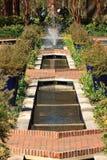 Mirada en el jardín de Eden Foto de archivo libre de regalías