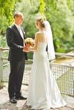 Mirada feliz del novio y de la novia en uno a Imagen de archivo libre de regalías