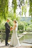 Mirada feliz del novio y de la novia en uno a Imagen de archivo
