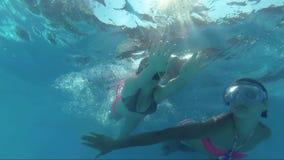 Mirada feliz en la cámara, lanzamiento subacuático de Dive In Swimming Pool de dos muchachas almacen de video