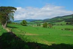 Mirada hacia el oeste en valle del tweed imagenes de archivo
