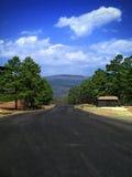 Mirada hacia fuera Foto de archivo libre de regalías