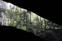 Mirada hacia fuera de una cueva Imagen de archivo libre de regalías