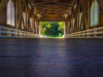 Mirada hacia fuera del puente de Dorena Imagenes de archivo