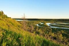 Mirada hacia fuera en los canales y bosque naturales Imagen de archivo