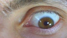 Mirada loca y del miedo del ojo humano almacen de metraje de vídeo