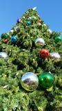 Mirada para arriba de un árbol de navidad gigante Fotografía de archivo