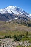 Mirada a través de prados alpinos al Monte Rainier del rastro de Fremont imagen de archivo