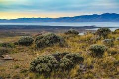 Mirador de Las Aguilas Viewpoint, Patagonia, Argentina. Vendimia lake and andes mountains at El Chalten. Patagonia - Argentina Royalty Free Stock Photos