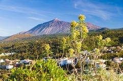 从Mirador Lomo Molino的El泰德峰火山 免版税库存图片