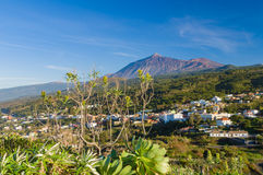 从Mirador Lomo Molino的El泰德峰火山 免版税图库摄影