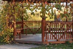 Miradouro de madeira envolvido com as folhas decorativas naturais imagens de stock royalty free