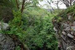 Miraflor Nature Reserve. A view of the Miraflor Nature Reserve near Esteli, Nicaragua royalty free stock images