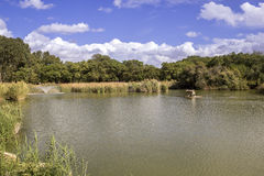 Miraflores public Green Park panoramic, located in Seville Stock Images