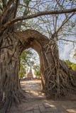 Mirakel`-nyckeln till passagen av tid` på fördärvar av Wat Phra NgamWat Cha Ram, Phra Nakorn Si Ayutthaya, Thailand Arkivbild