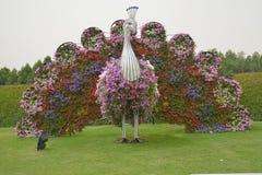Mirakelträdgård i Dubai Arkivfoton