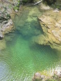Mirakulös vintgar kanjon Slovenien Arkivfoton