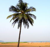 Miramar plaża, Goa obrazy stock