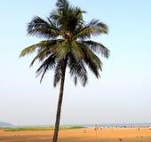 Miramar strand, Goa Stock Afbeeldingen
