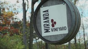 Miranda Vineyard (8 of 8). A view or scene of Wine stock footage