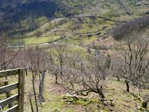 Mirando abajo en el valle de Dovedale, distrito del lago Fotos de archivo