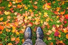 Mirando abajo los zapatos, hojas otoñales coloridas en la tierra, concepto del otoño Foto de archivo