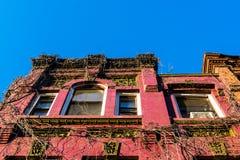 Mirando para arriba la fachada vid-cubierta de un edificio viejo de la arenisca de color oscuro de Harlem, Manhattan, New York Ci foto de archivo libre de regalías