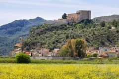 Miravet dorp en kasteel met een gebied van kleurrijke wilde bloemen in Catalonië stock foto's