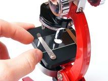 Mircoscope rosso Fotografie Stock Libere da Diritti