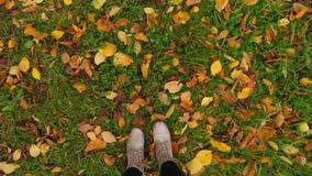 Mire abajo en botas de la mujer y hojas caidas amarillo metrajes