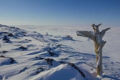 Mire al Polo Norte Foto de archivo libre de regalías