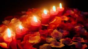 Mire al trasluz la cantidad ardiente para celebran día de San Valentín con los pétalos de la flor metrajes