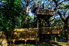 Mire hacia fuera la torre en el bosque Imágenes de archivo libres de regalías
